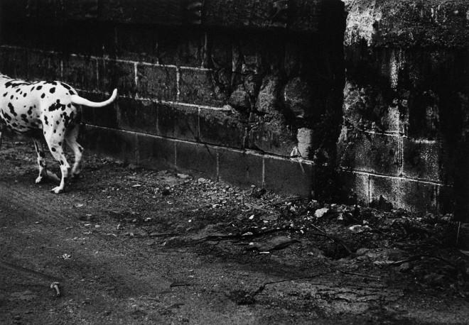 Reiko Imoto, 'Parallelism' 2000