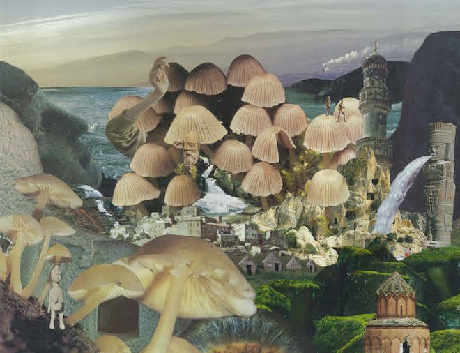 seana gavin. mushroomscape. paper collage on card. 2017.